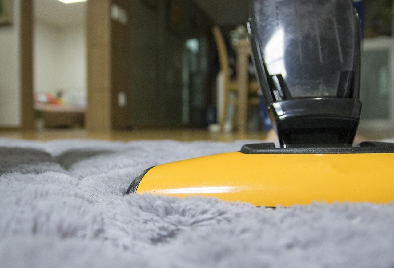 keep carpet warranty