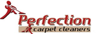 perfection clean logo